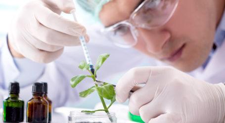 Nasdaq Biotechnology – Steht ein Comeback bevor?